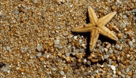 Legambiente operazione spiagge pulite