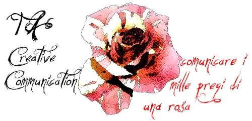Thesis Ambiente Creative Communication comunicare i mille pregi di una rosa